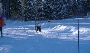 13_decembre_entrainement_ski_club_033